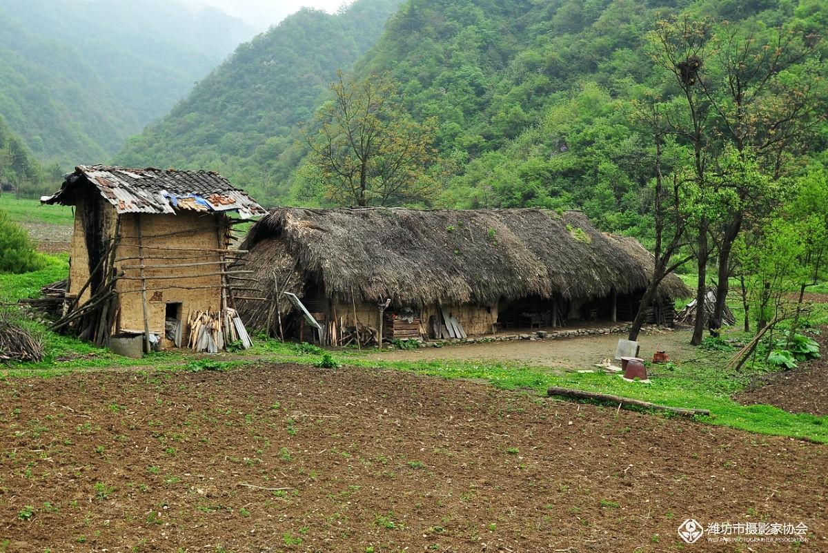 川北山区的茅草房,不知道是不是临时栖身之处?