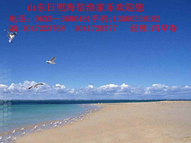 日照海边风光202.jpg