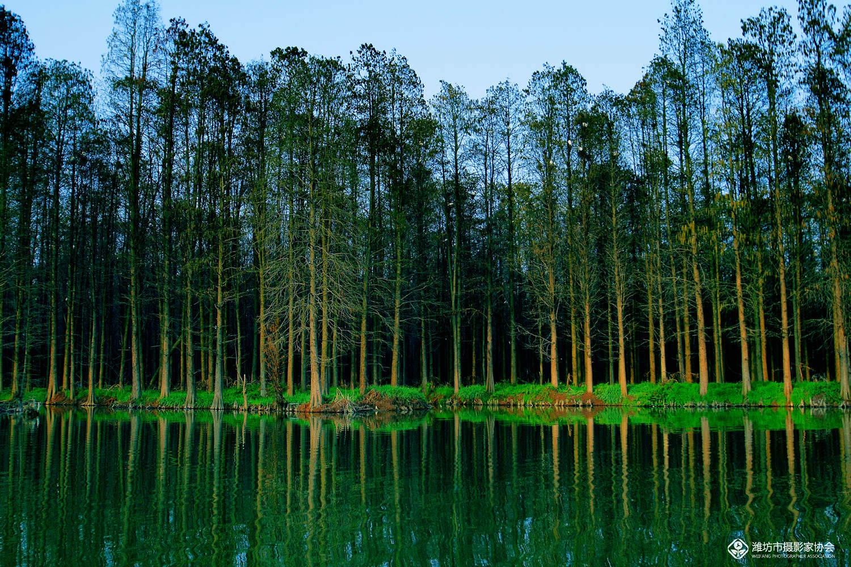 69 水上森林公园  分享到:qq空间新浪微博腾讯微博人人网微信qq好友
