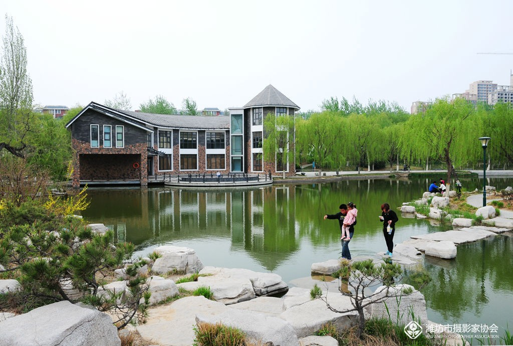 青石灰瓦,新绿点缀其间,潍坊植物园就如一盘精致盆景,靓丽清雅,引得
