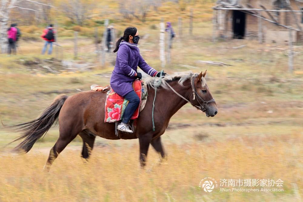 10.坝上女骑手〔摄影:王亮朝〕.JPG
