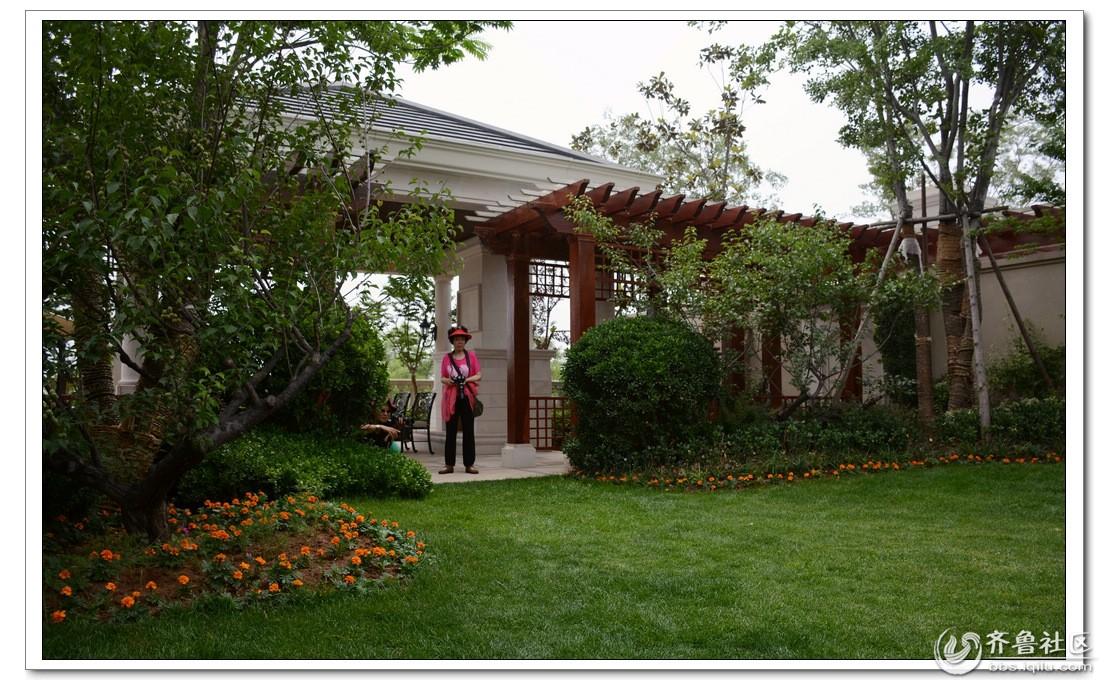 莱芜采风---桃花别墅的后花园