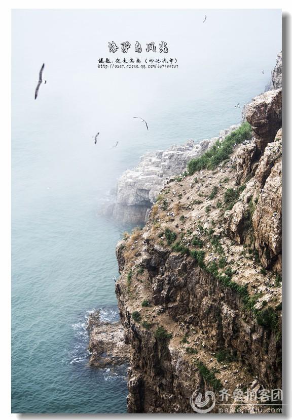 海驴岛风光 - 枣庄拍客