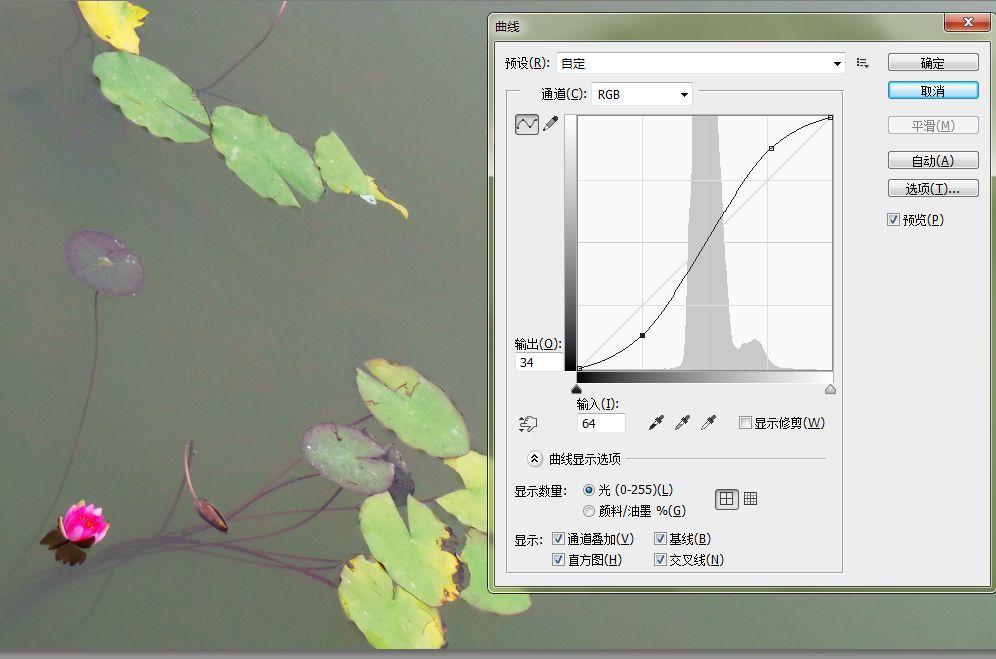 曲线02.jpg