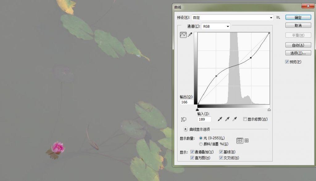 曲线03.jpg