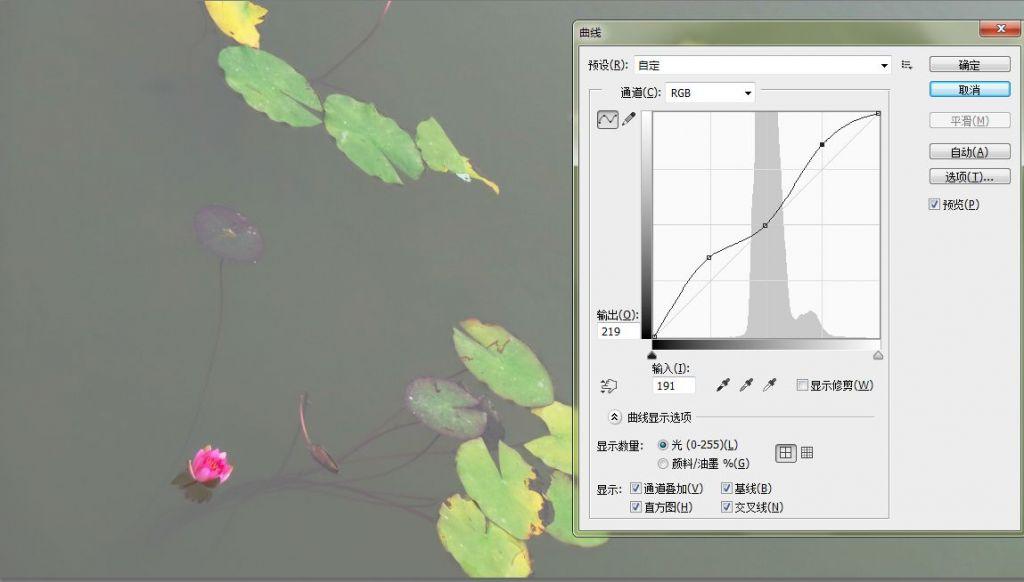 曲线04.jpg
