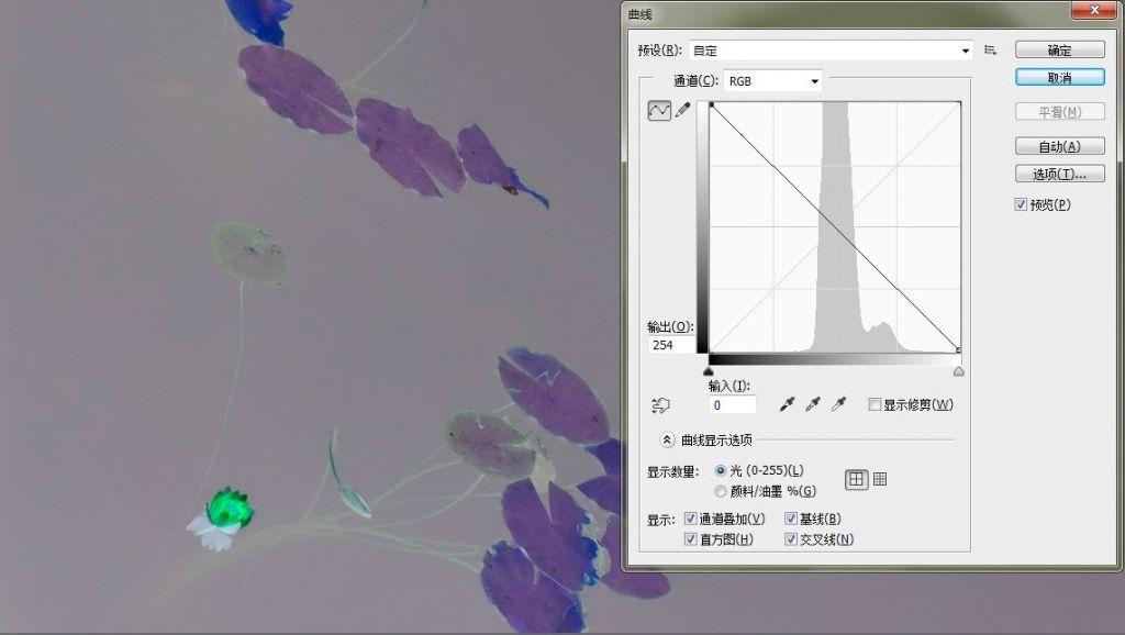 曲线07.jpg
