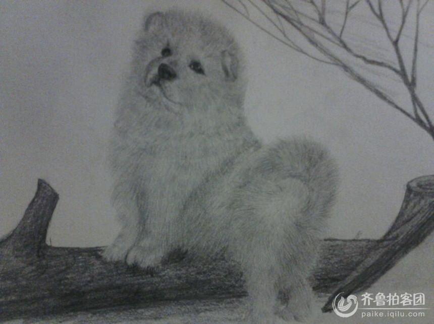出自一个只有初中文化的女人之手,且她从来没有经过专业绘画艺术训练