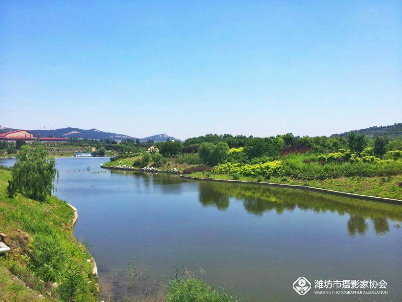 手机拍摄昌乐桂河湿地风光高清图片