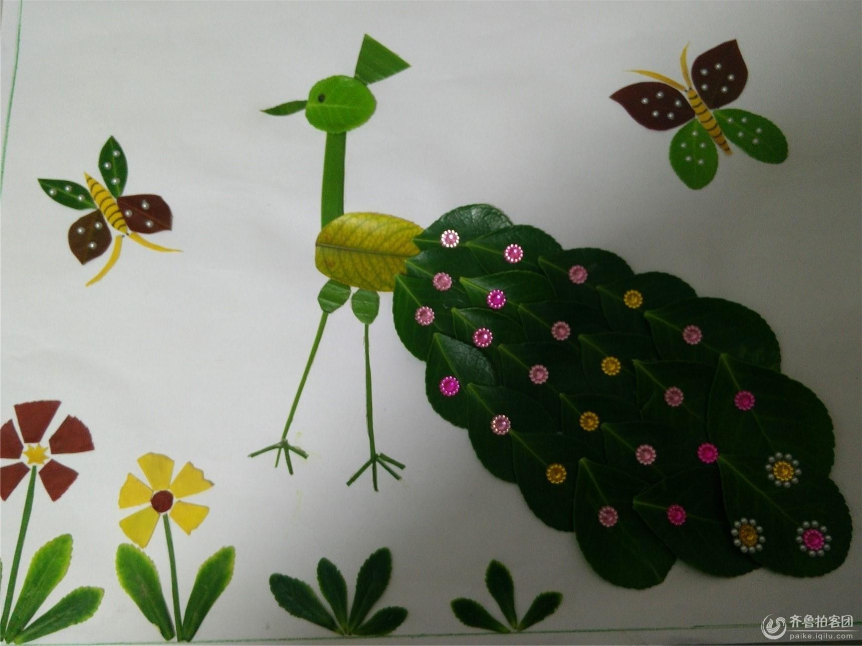 树叶画 孔雀