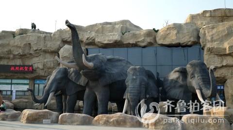 消防日游览黄河三角洲动物园