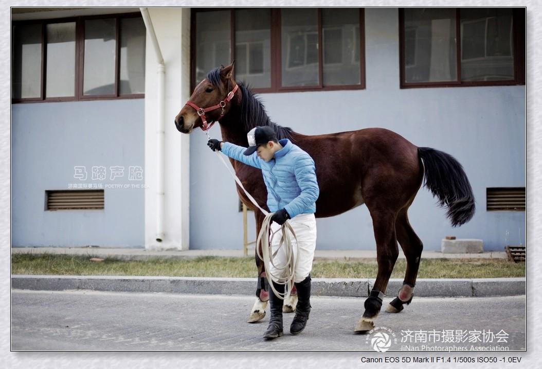济南国际赛马场