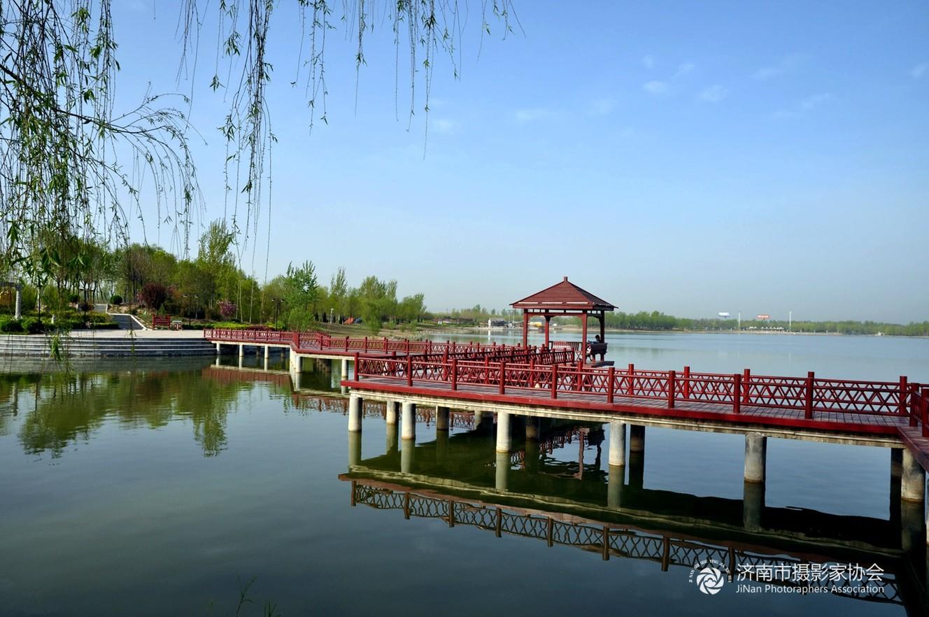 美丽的澄波湖 - 济阳县 - 齐鲁社区 齐鲁社区