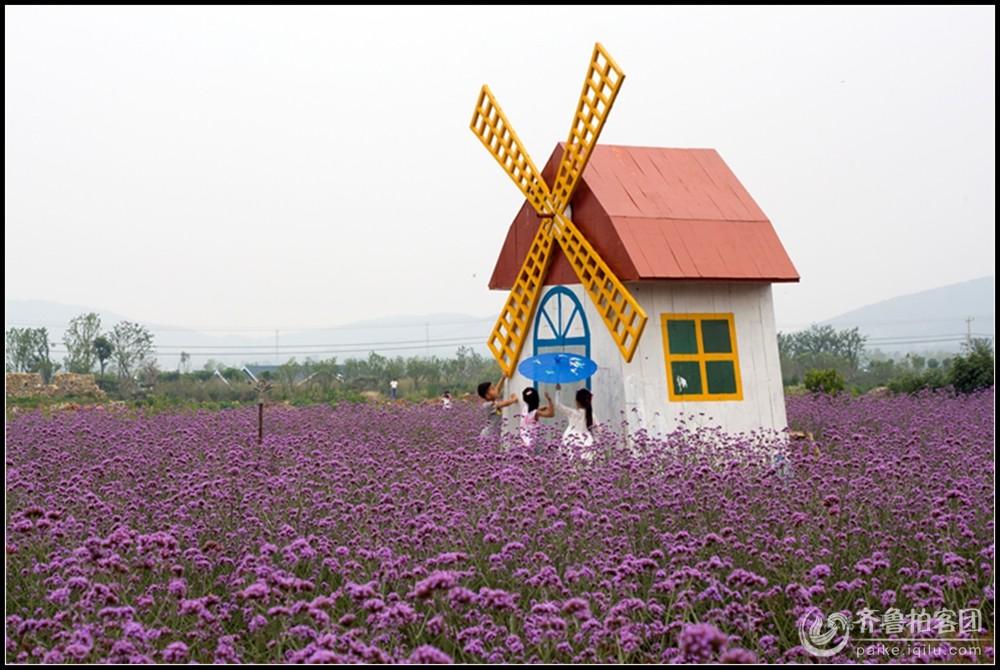 徐州贾汪紫海蓝山采风作业