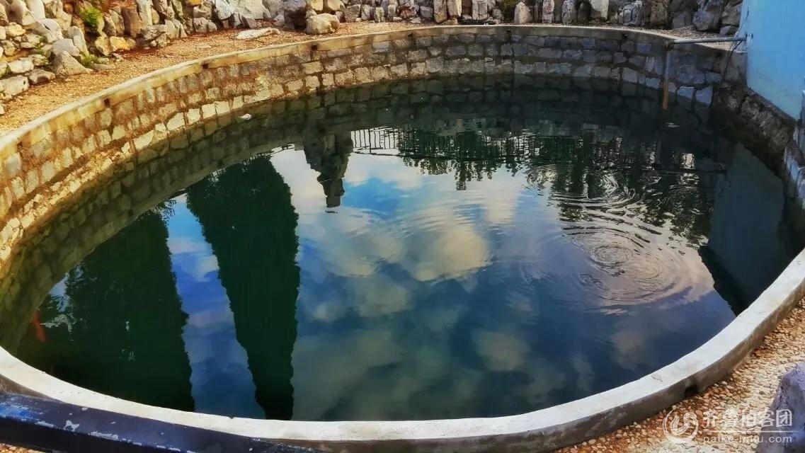 坐井观天,青蛙的蓝天