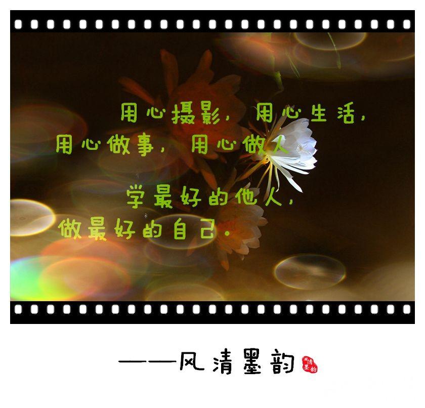 【双节随手拍】每日一片(1675)金秋时节走进寻常百姓家