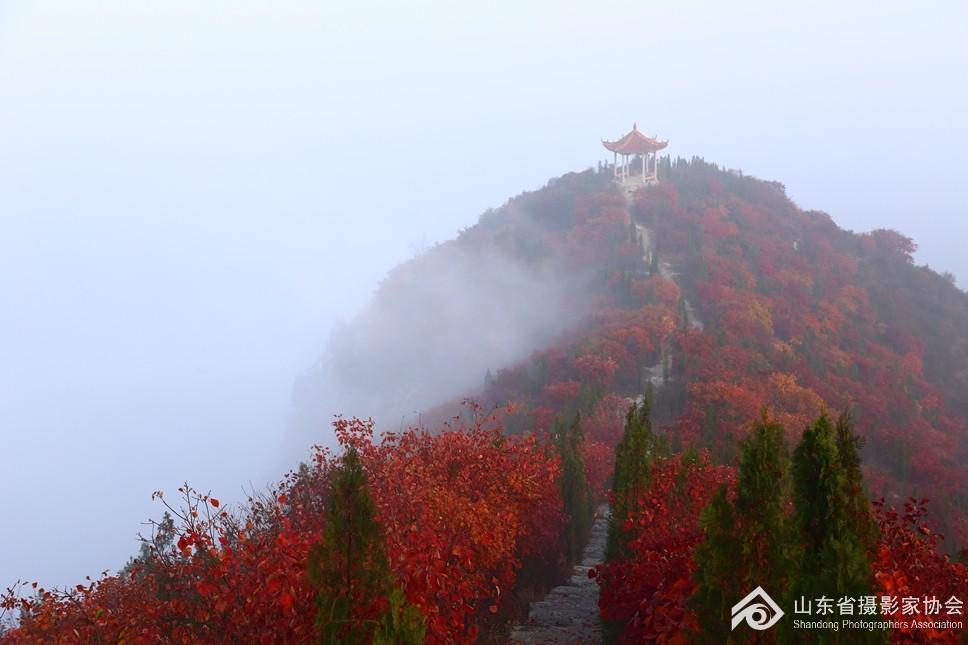 (1)雾海孤峰.jpg