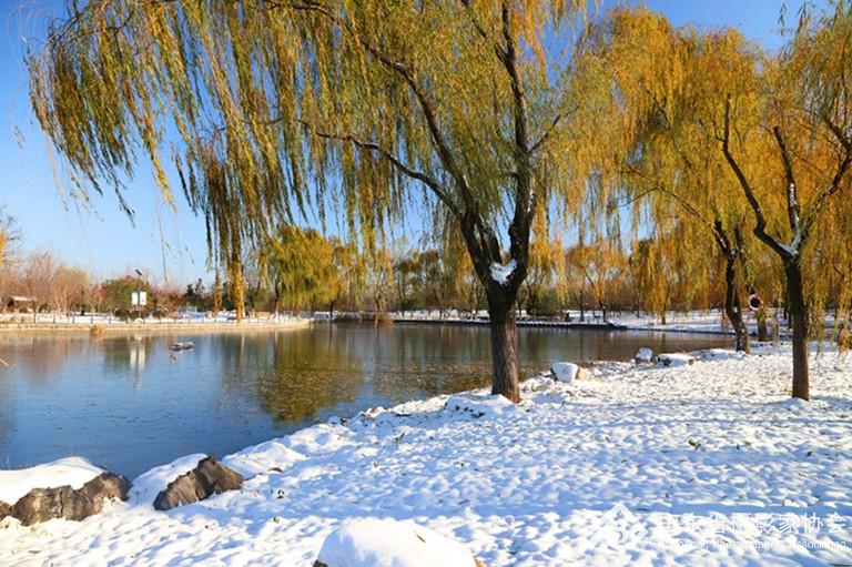 (2)秋实湖雪霁.jpg