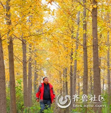 秋色.jpg