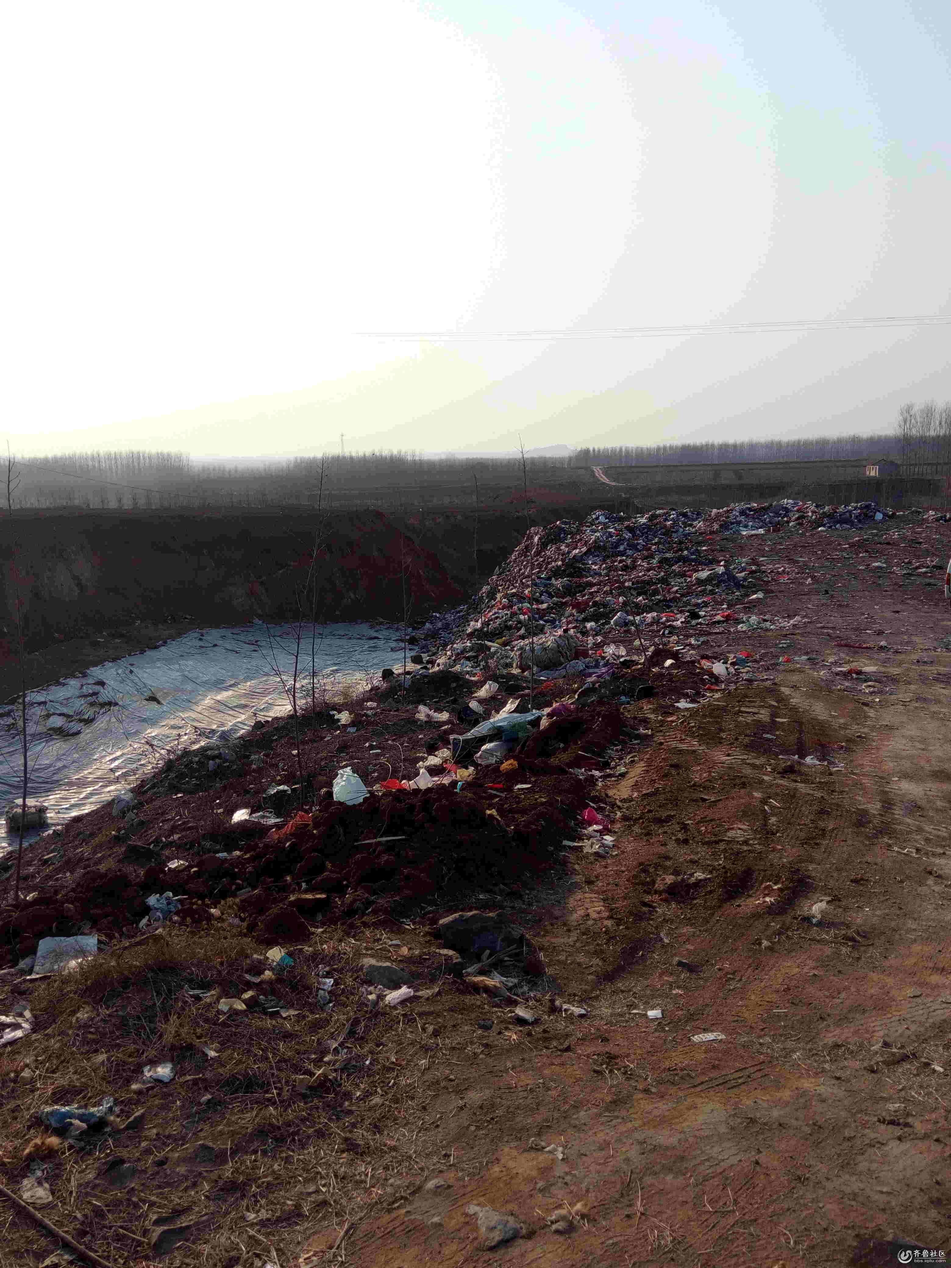 垃圾污染现场照片