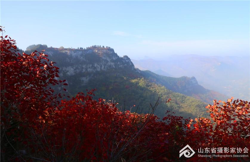 秋色烂熳三王峪.jpg