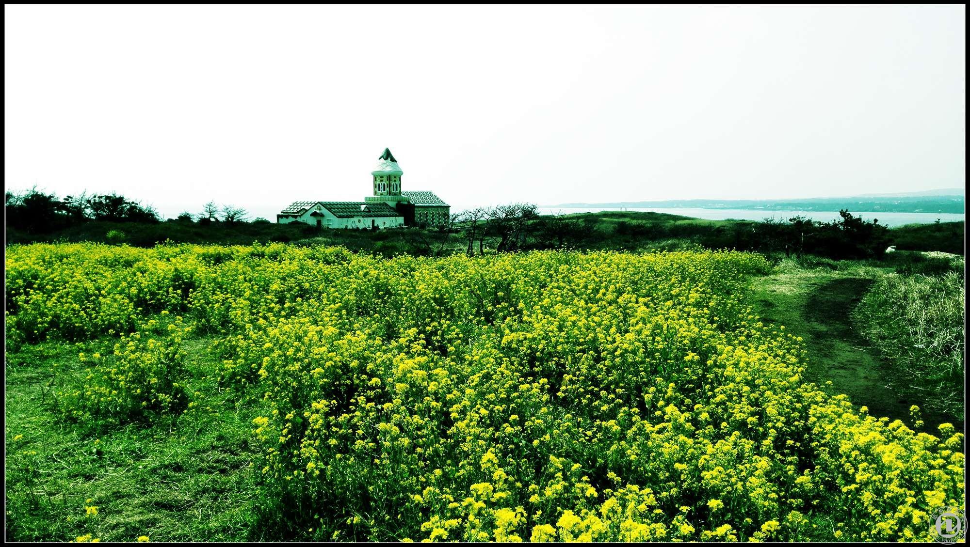 微信头像韩国风景图片大全