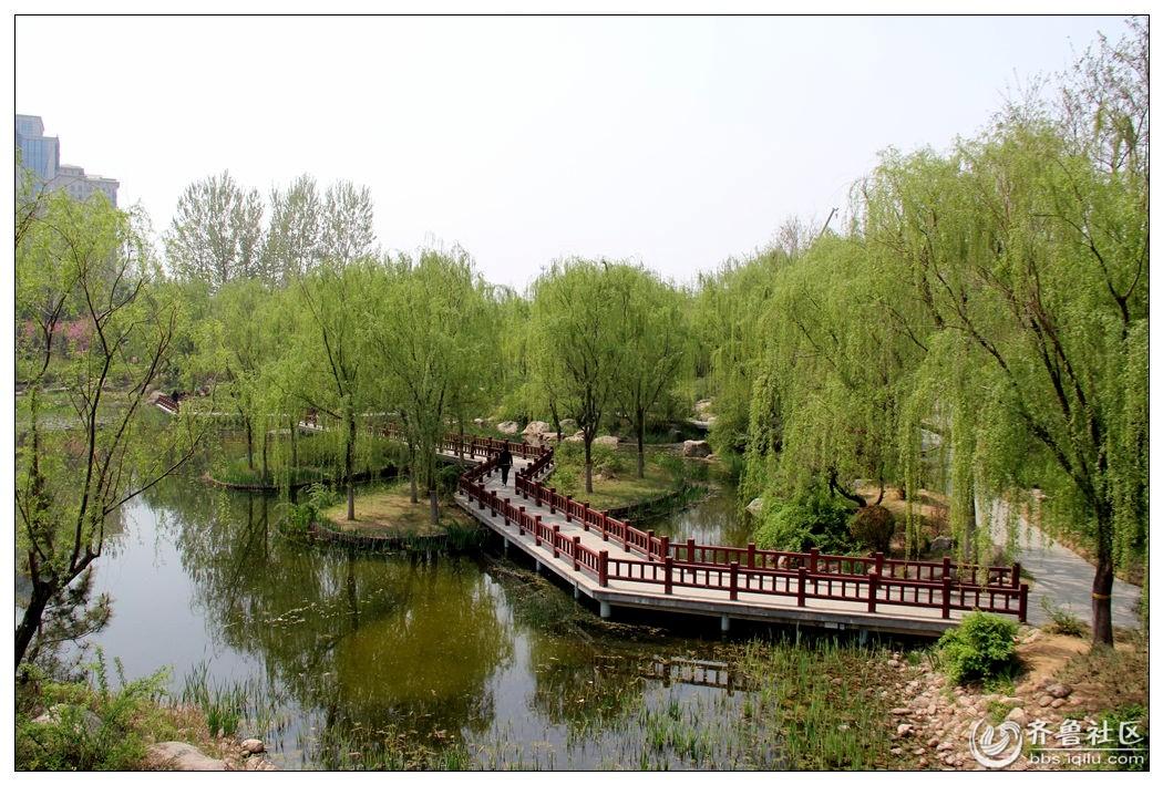 潍坊植物园小景(8)