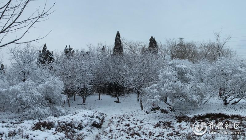 植物园 (4).jpg