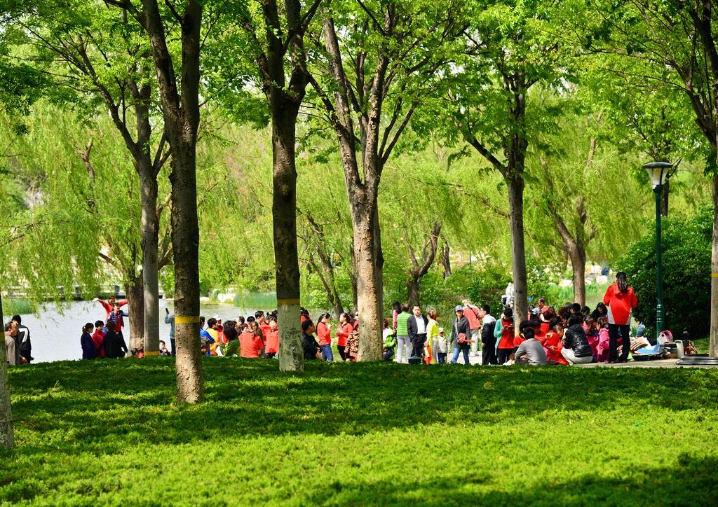 潍坊植物园景观--4