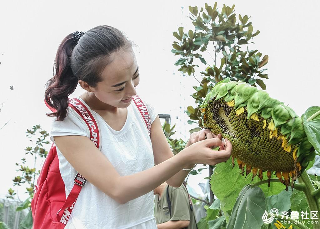 游薛城蟠龙河畔禾和龙润生态园拍摄
