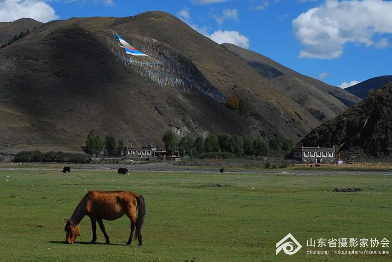 《天边的马》田雨.jpg