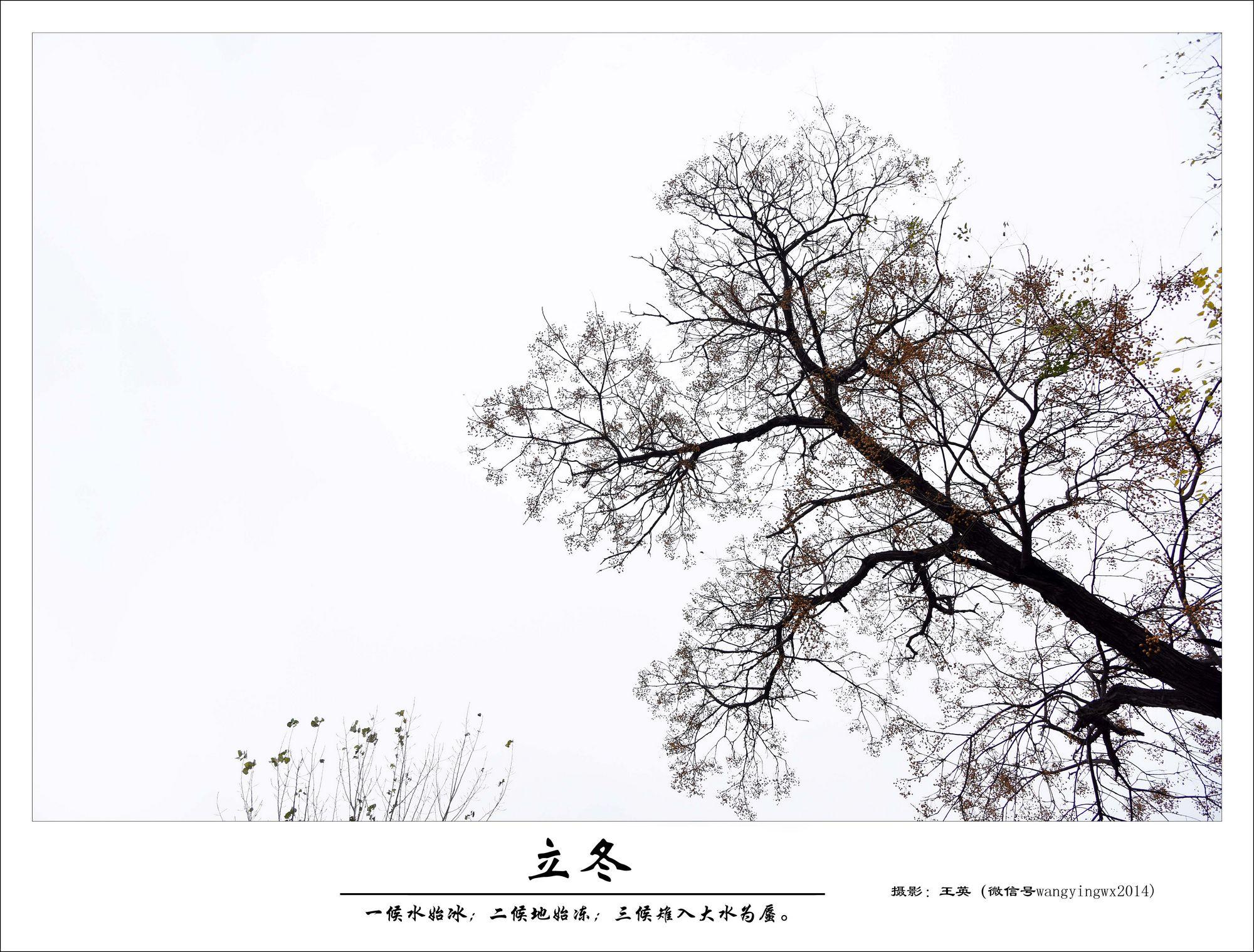 古诗-描写冬至的小诗-幼儿元旦主题画-一年级立冬手抄报-冬至的经典图