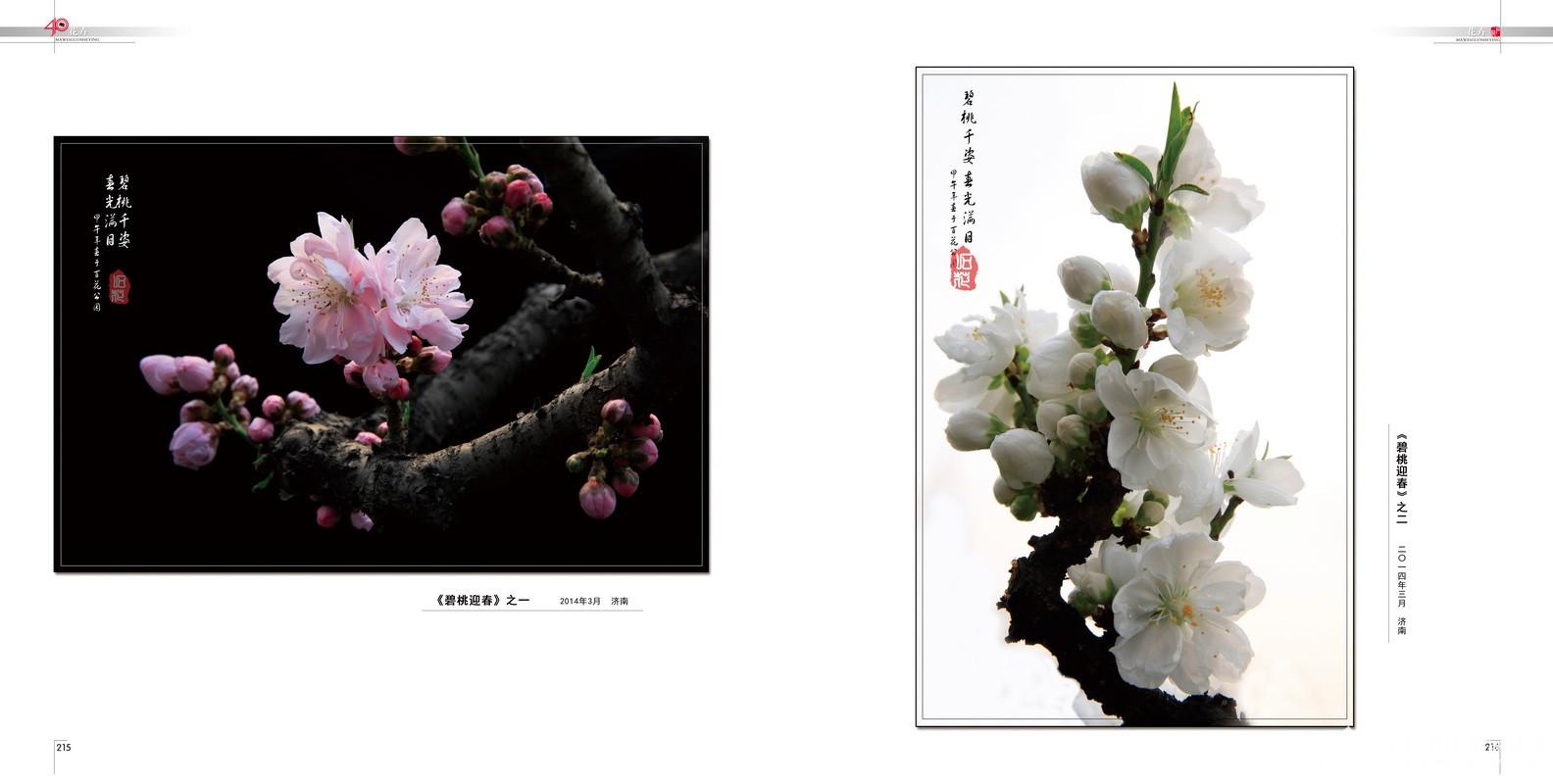 112.花卉.2014.03.jpg