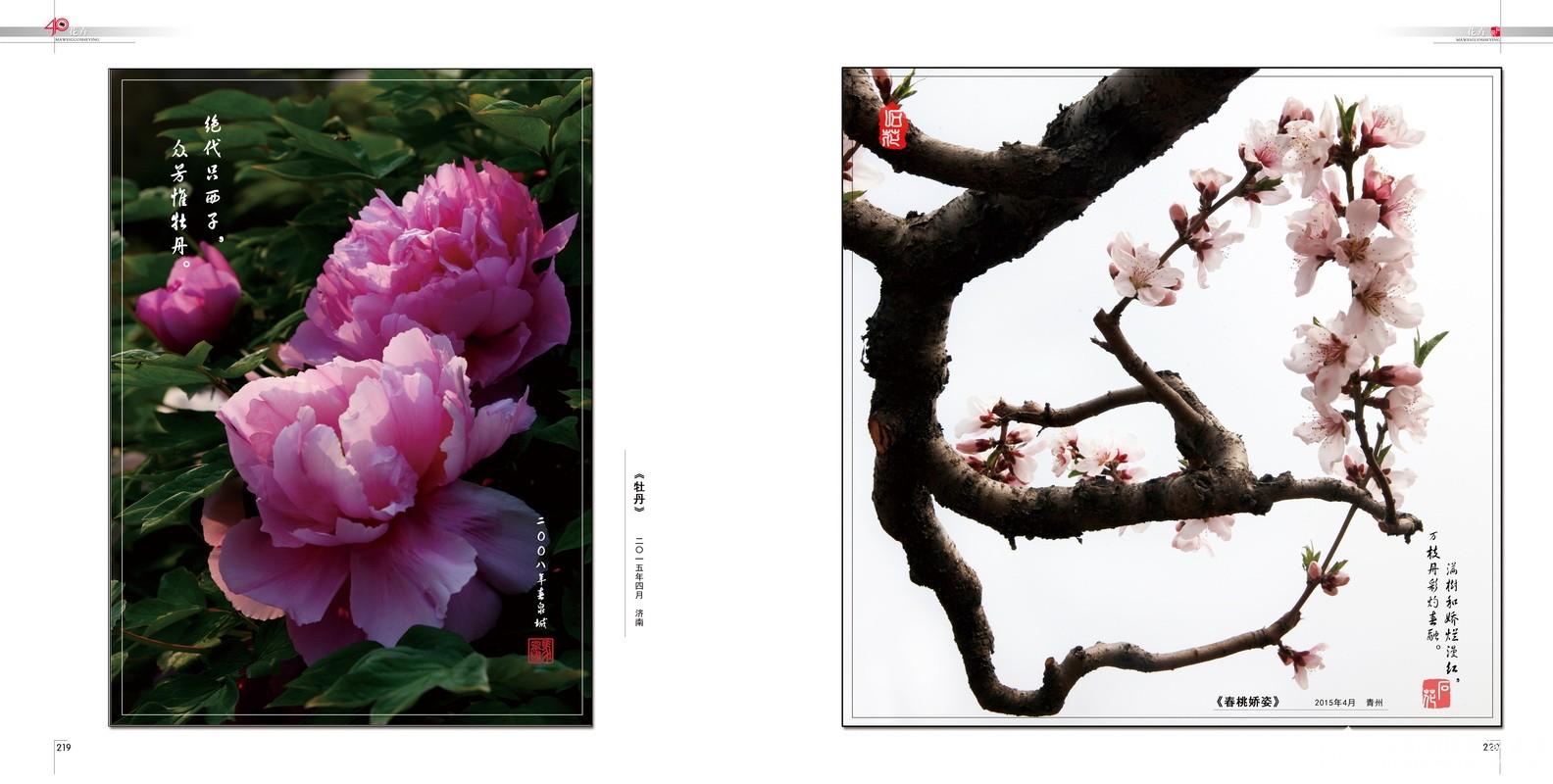 116.花卉.2015.04.jpg