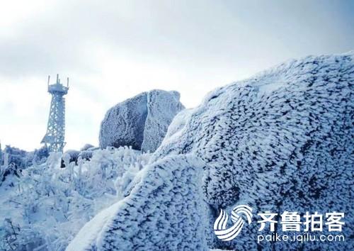 青岛崂山迎来冬景观赏季 现雾凇云海冰挂