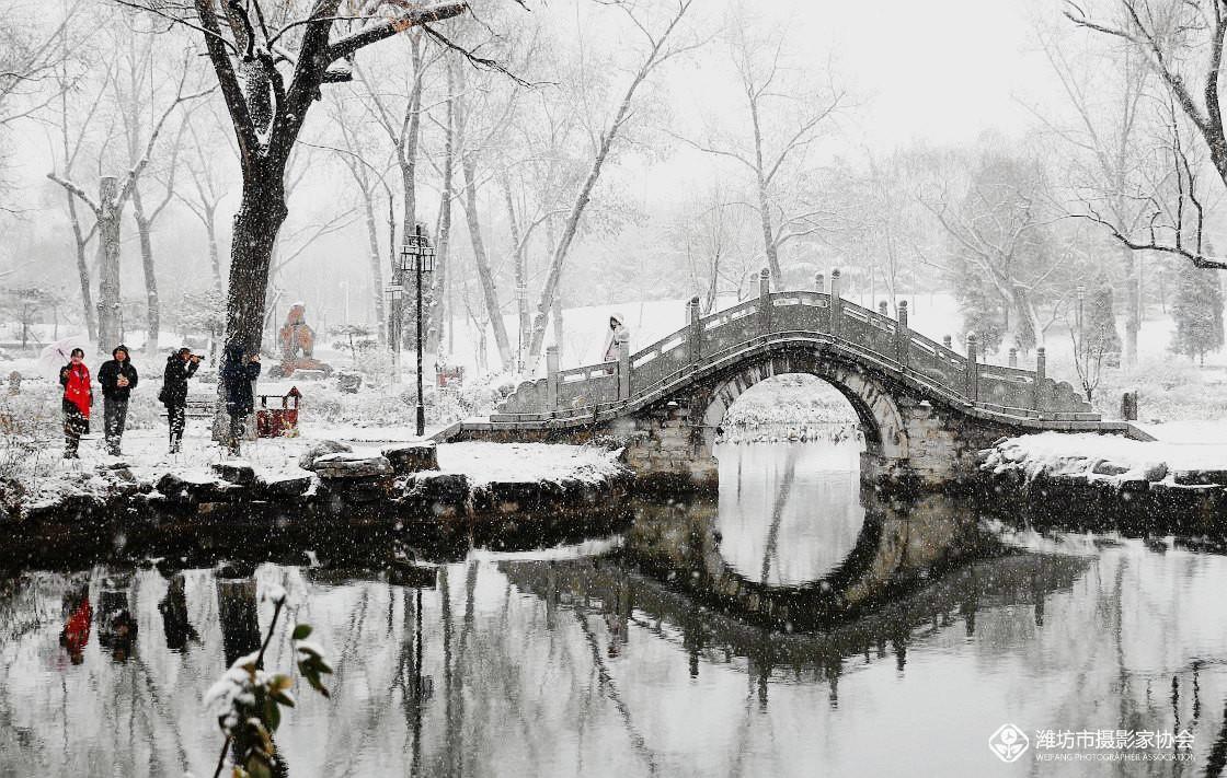 春季里看雪景——雪飘景色美
