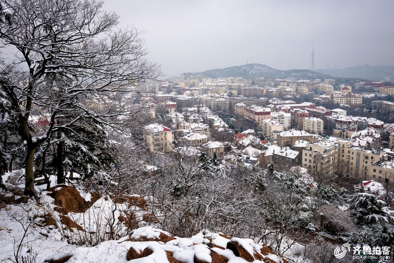青岛城阳纪某雪