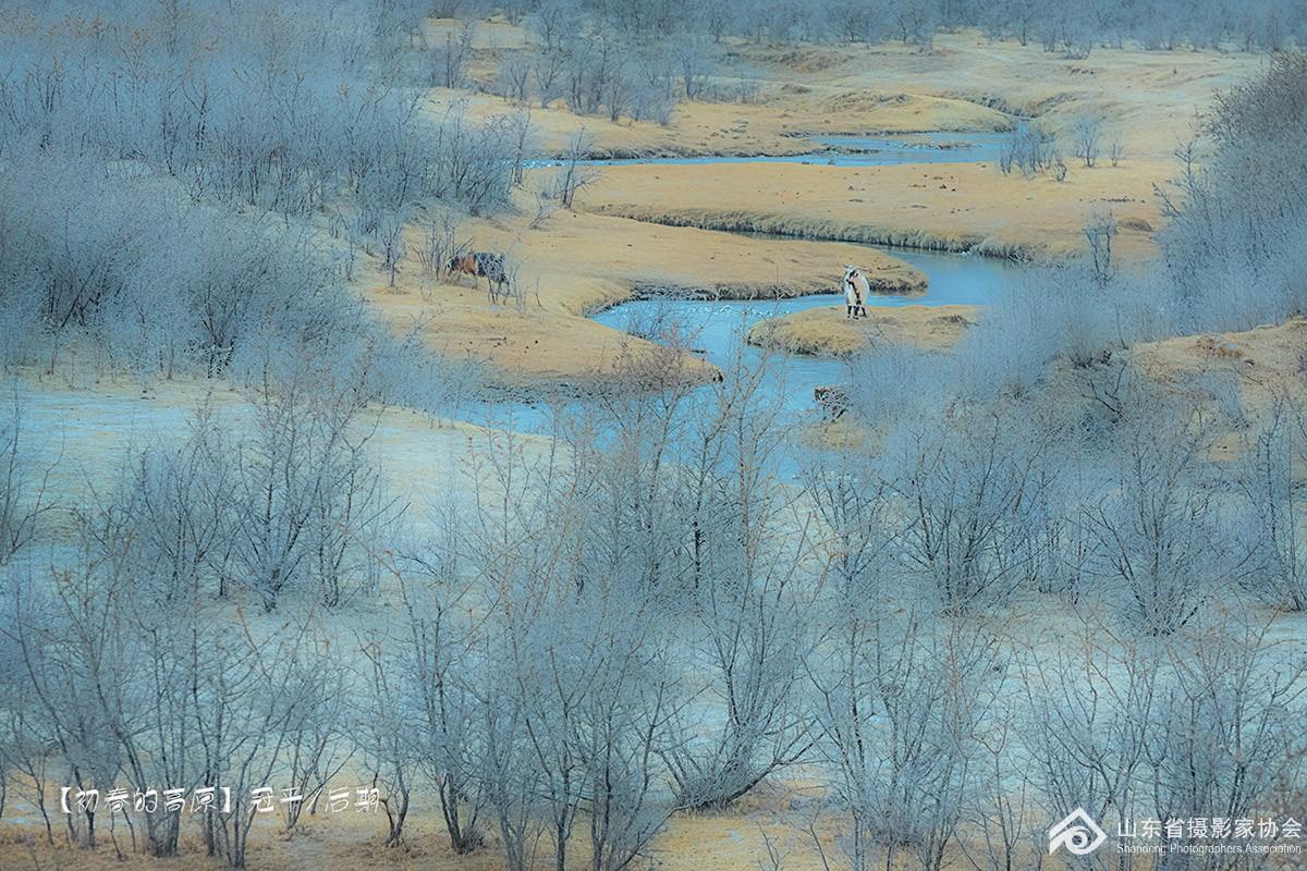 初春的草原2sss.jpg