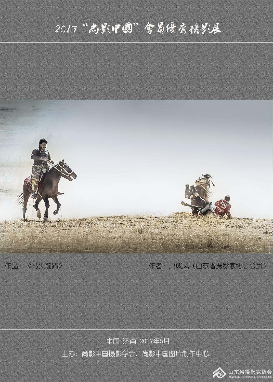 作品:《马失前蹄》作者:卢成凤.jpg