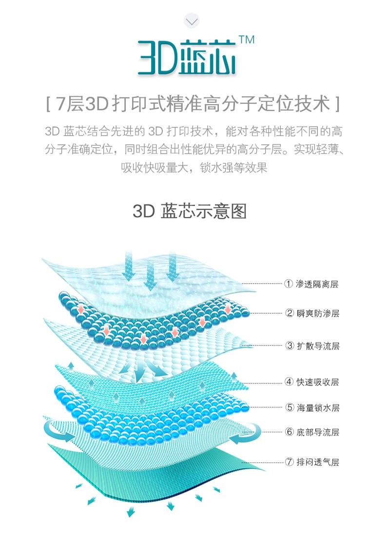 3D蓝芯7层解剖图.jpg