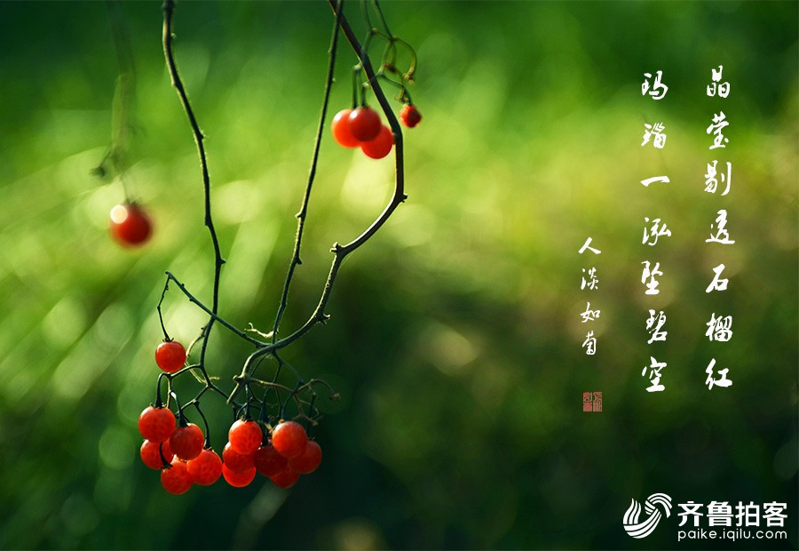 DSC_9582.jpg调1.jpg