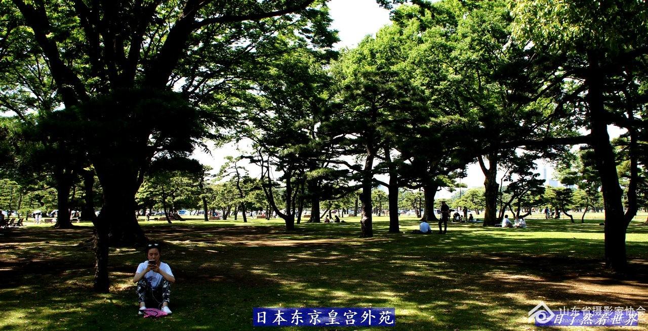 东京皇宫外苑-030-1280.jpg