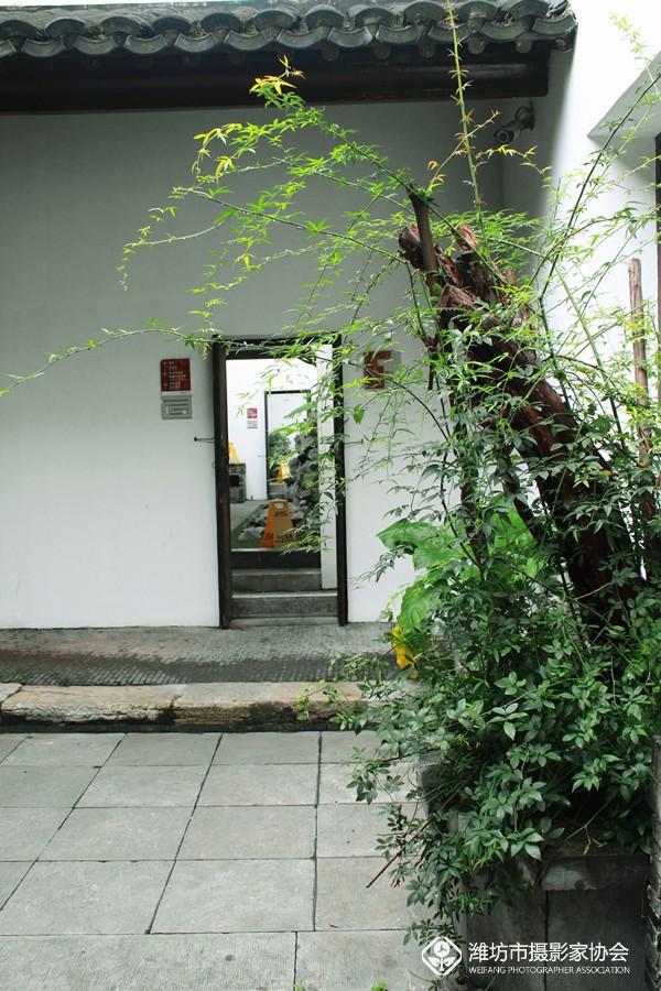 IMG_9565_副本.jpg