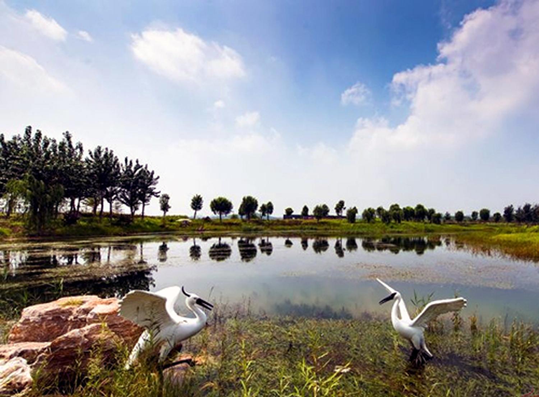 平阴玫瑰湖03摄影:佚名.jpg