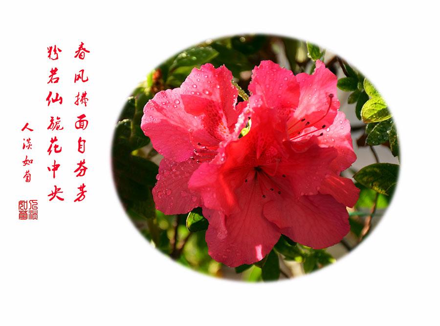 DSC_9987.jpg调.jpg