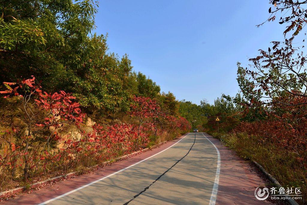 拍摄地点:曲阜市吴村镇九仙山.