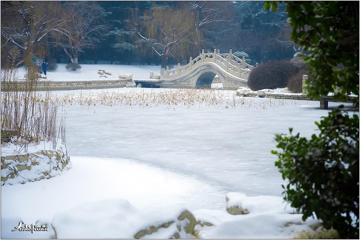 【数码组图】20180128自怡园公园雪景拾零