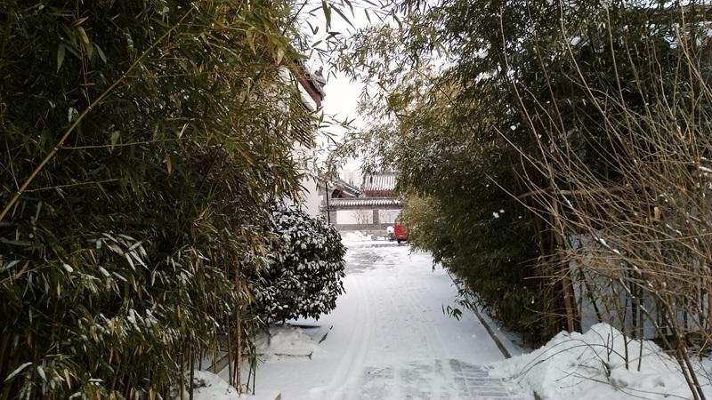 又下雪了72.jpg