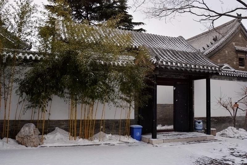 雪中十笏园026.jpg