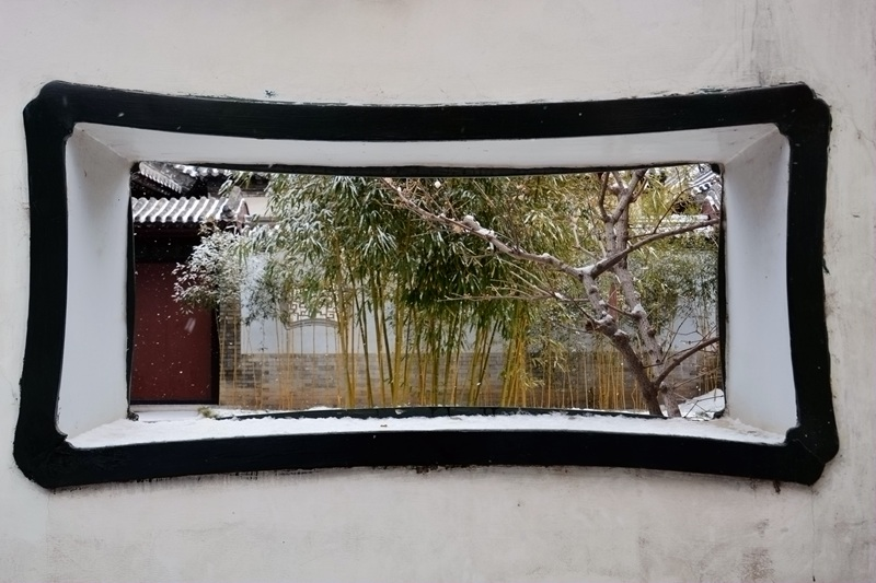 雪中十笏园064.jpg
